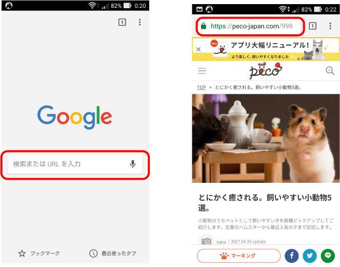 kensaku_c2.jpg